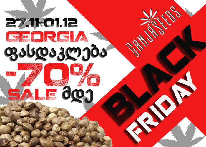 It's Time for Black Friday!